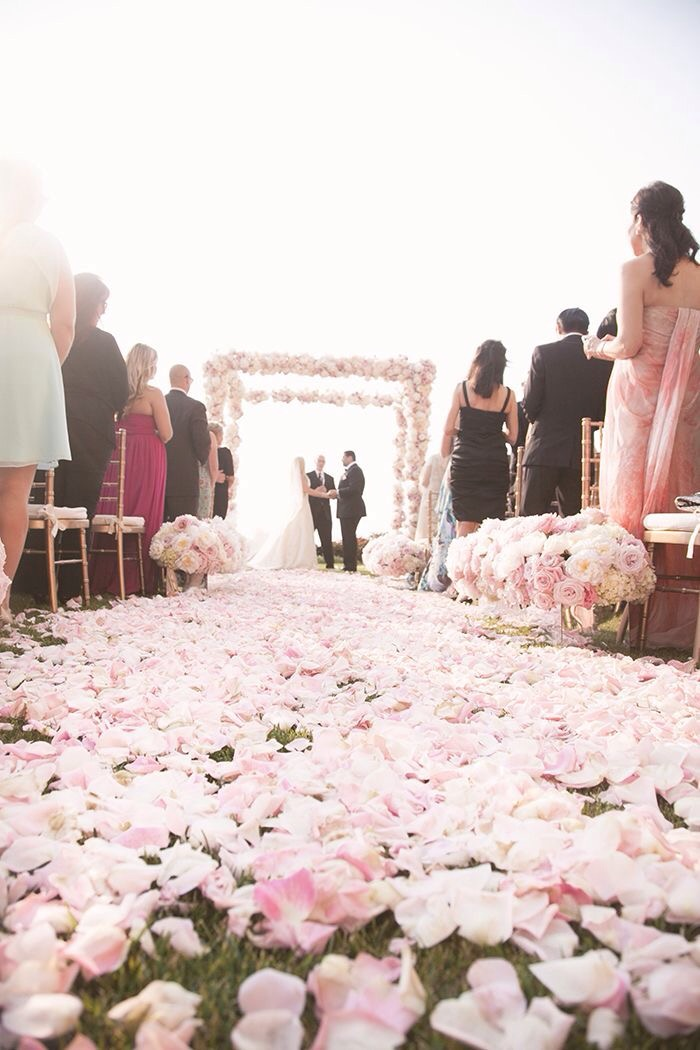 Wedding guests - ceremony