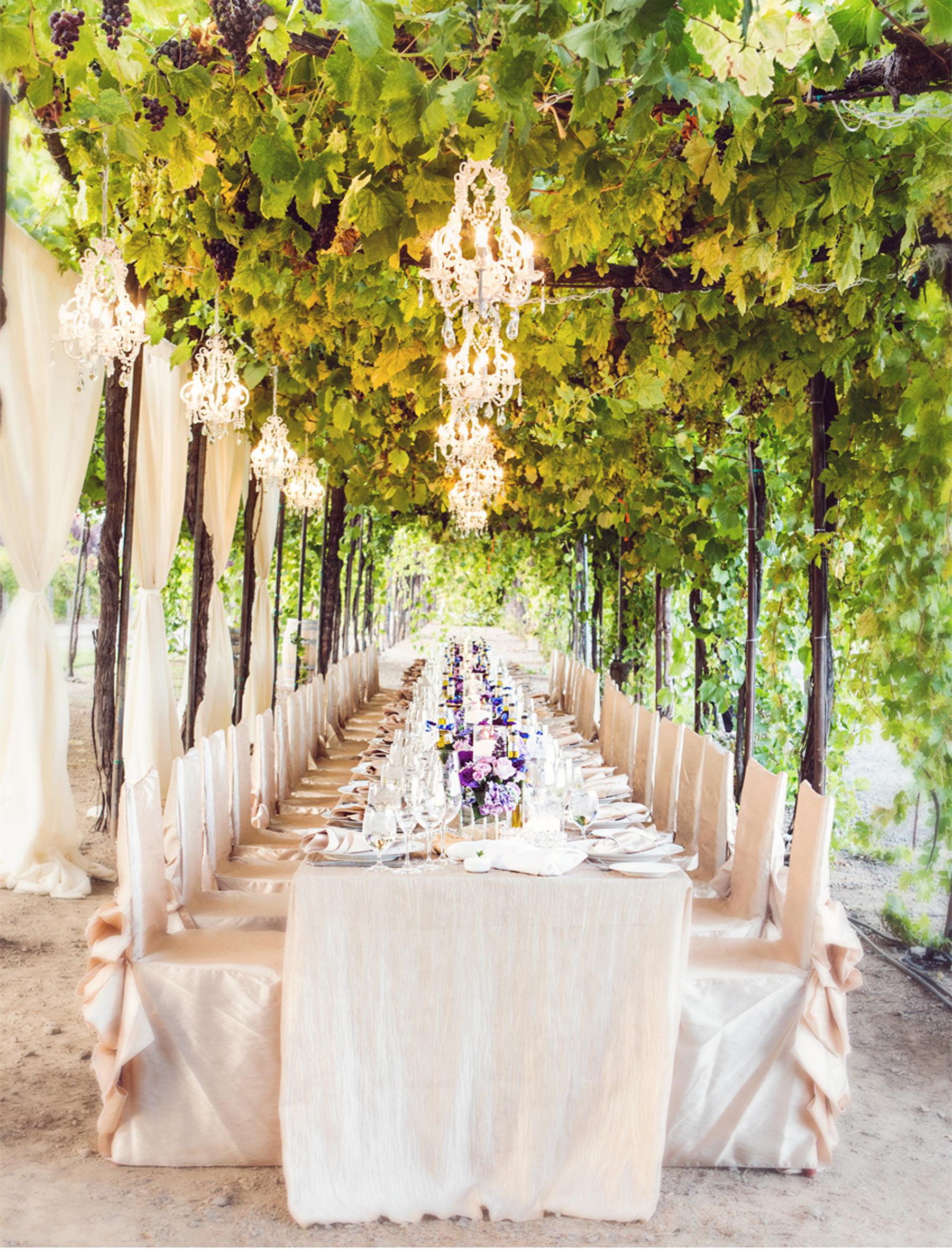 Napa vinyard wedding