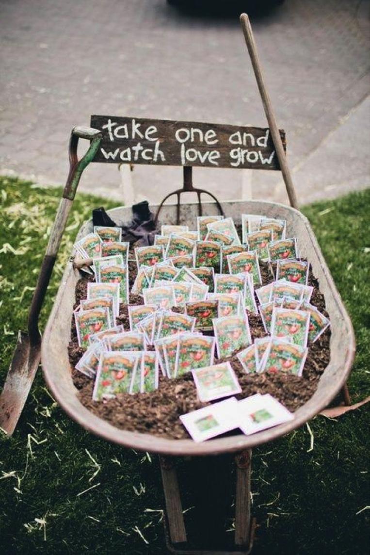 Plant favour