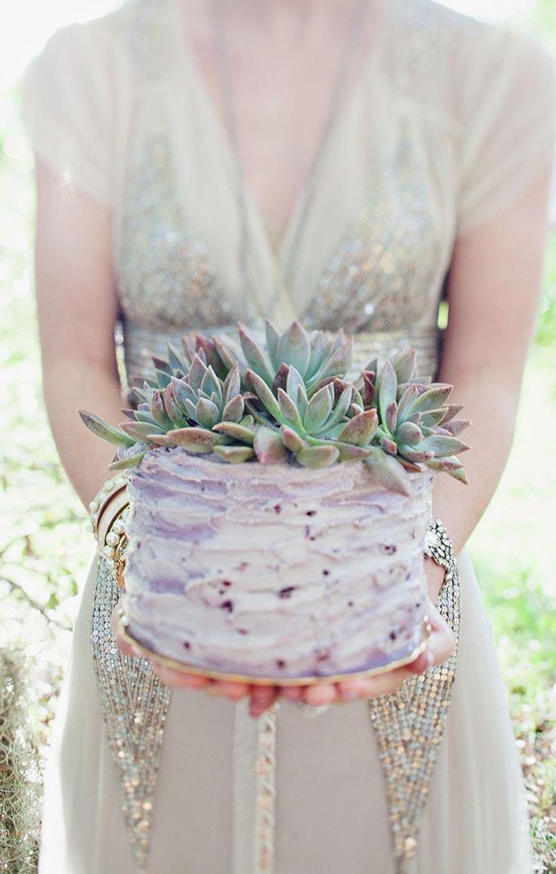 lavender succulent cake