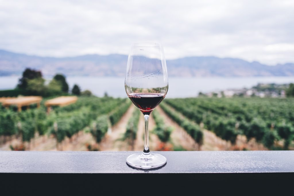 A glass of red wine in a clear wine glass sat on a balcony overlooking a vineyard backed by a mountain range
