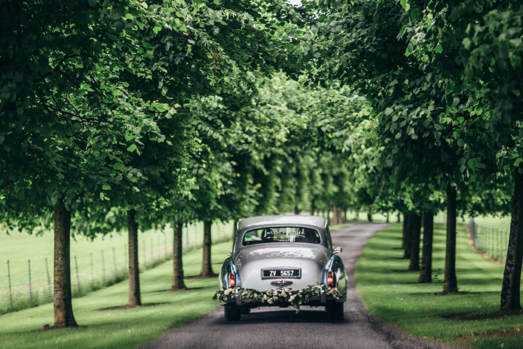 A silver vintage wedding car drives up a lane that has tall green trees on either side of the path. The back bumper is decorated with white flowers and greenery